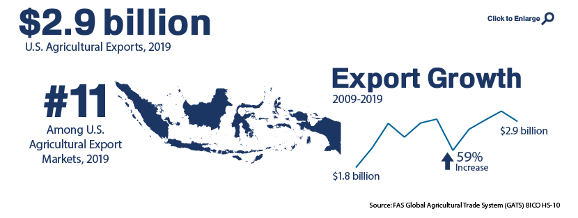 Infographic showing U.S. agricultural trade with Indonesia in 2019