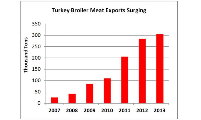 Bar chart showing the surge of Turkish broiler meat exports from 25 thousand tons in 2007 to over 300 thousands tons in 2013