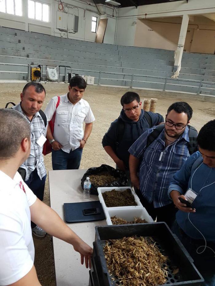 Venezuelan dairy farmers study cattle nutrition, learning about U.S. feed ingredients.