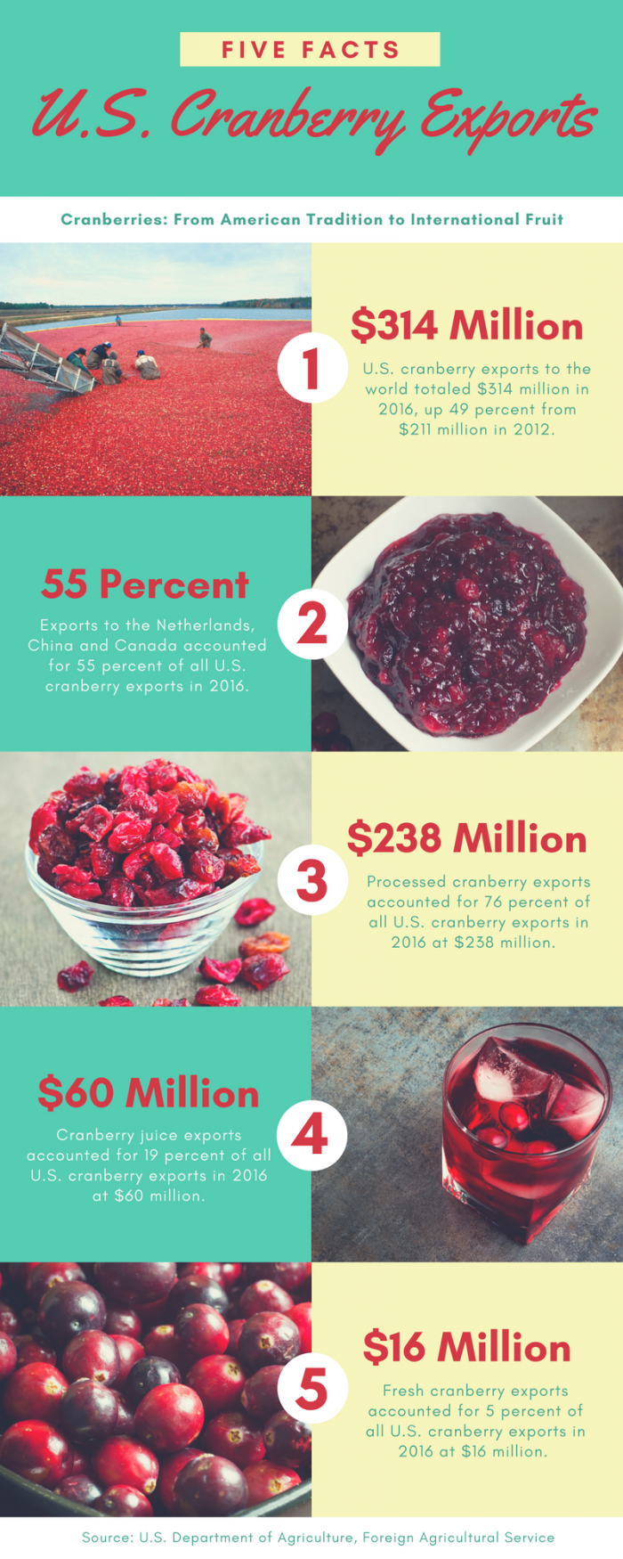 Graphic showing 5 key facts about U.S. cranberry exports which reached $314 million in 2016.