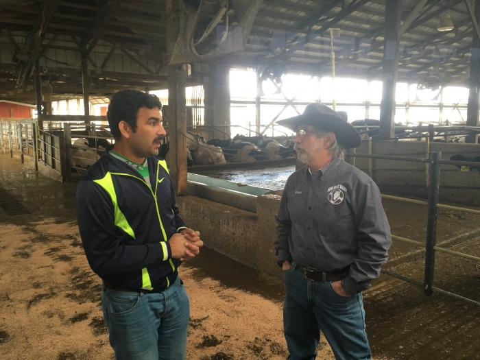 Pakistan Cochran fellows discuss cattle performance on a farm tour in Wisconsin.